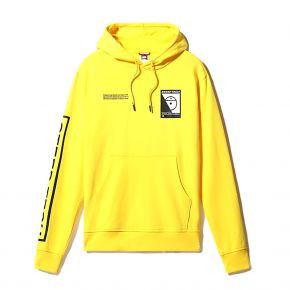 THE NORTH FACE M STEEP TECH LOGO HOODIE NF0A4SYIRR8
